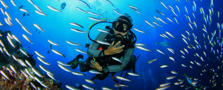 Equipement de qualité pour de la plongée sous-marine